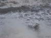 Stormy-Seas-Livermead-Torquay-19
