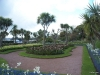 Torbay-Palm-Garden-1