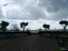 Torbay-Palm-Garden-2