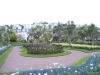 Torbay-Palm-Garden-3