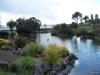 Torbay-Palm-Garden-6