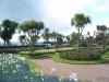 Torbay-Palm-Garden